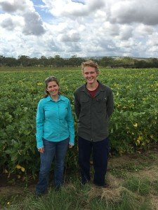 Additions to DAF Kingaroy entomology team